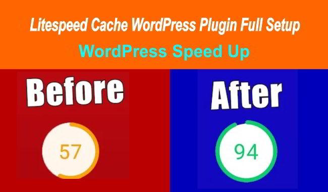 litespeed cache wordpress plugin full setup