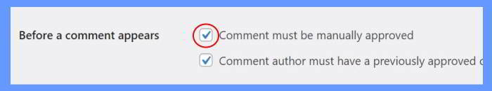 comment must be manually approved