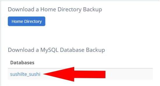 website का full backup कैसे ले
